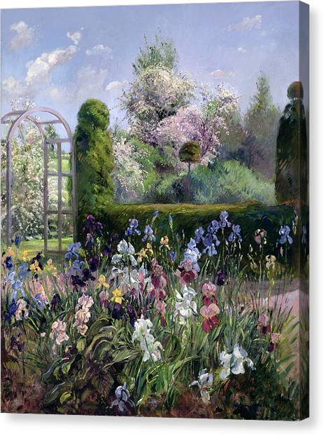 Blooming Tree Canvas Print - Irises In The Formal Gardens, 1993 by Timothy Easton