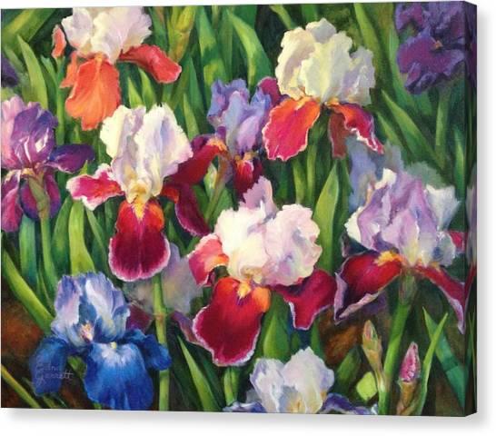 Irises2 Canvas Print