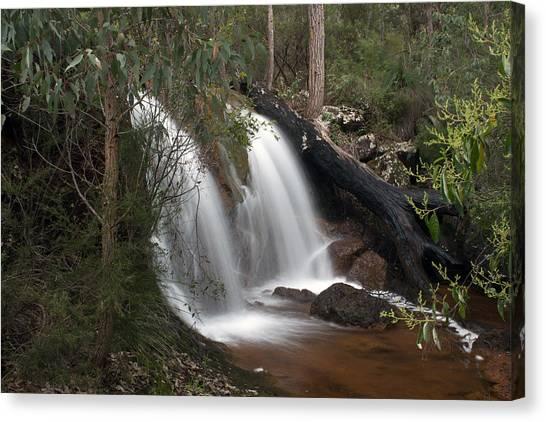 Ironstone Gully Falls 2 Canvas Print