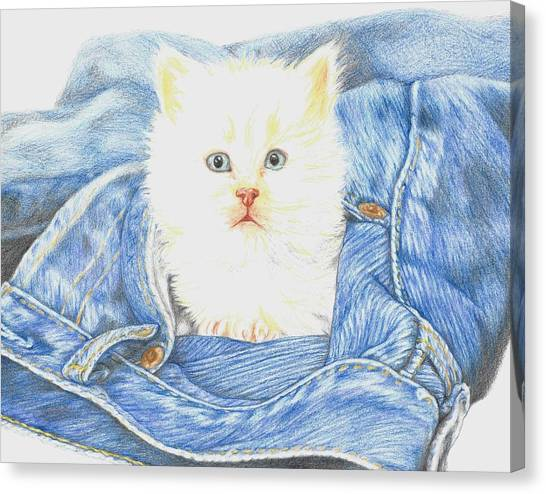 Fineart Canvas Print - Is That A Kitten In Your Pocket? by Monica Margarida
