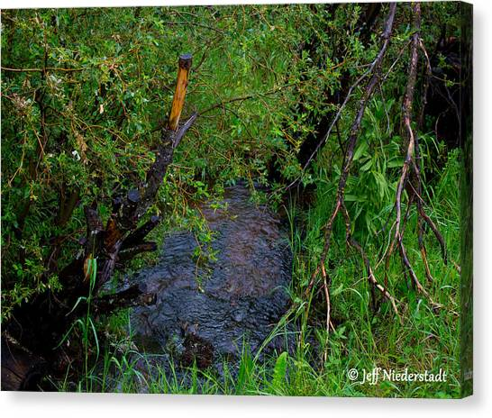 Isabel Creek Canvas Print