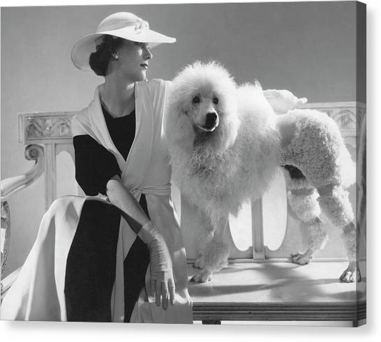 Isabel Johnson With A Poodle Canvas Print by Edward Steichen