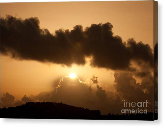 Canvas Print - Island Morning Light by Jared Shomo