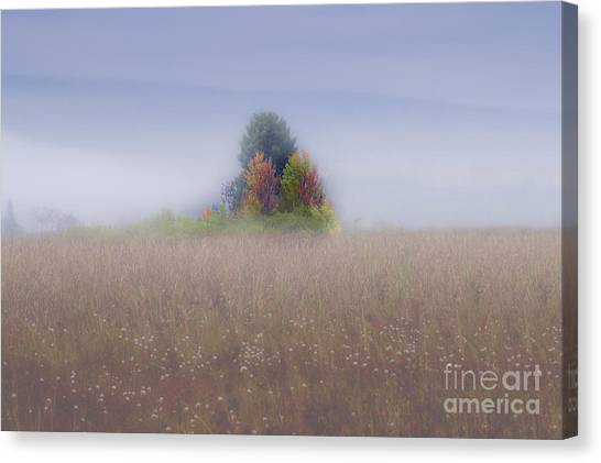 Island Of Color In Sea Of Fog Canvas Print