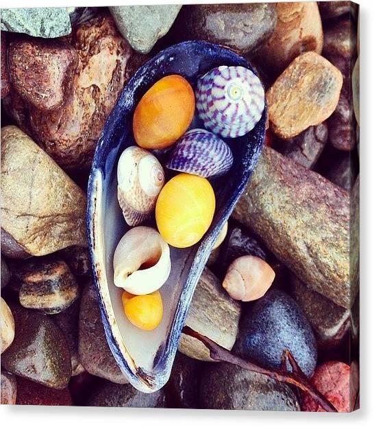 Seashells Canvas Print - #isleofskye #skyescotland #skye by Migdalia Jimenez
