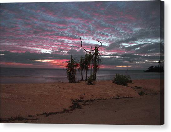 Australian Canvas Print - Isolated Beach by Andrew Krischock