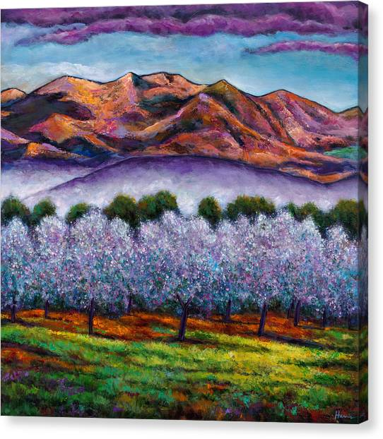 Wildflowers Canvas Print - Italian Orchard by Johnathan Harris