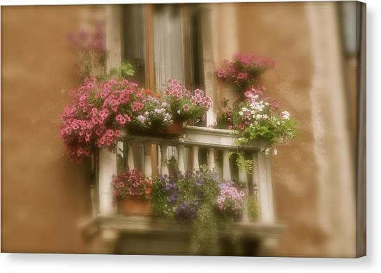Italian Windowbox 1 Canvas Print