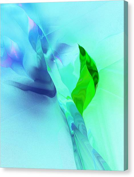 Canvas Print - It's A Mystery  by David Lane