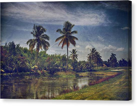 Palm Trees Canvas Print - It's Hanging In The Air by Laurie Search