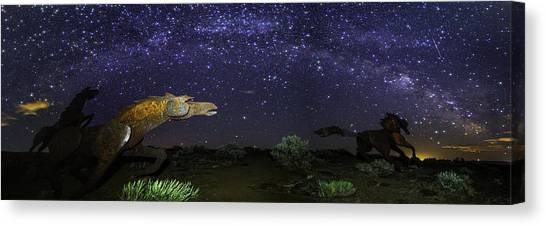 Its Made Of Stars Canvas Print
