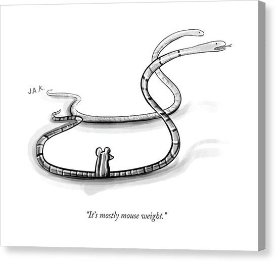 It's Mostly Mouse Weight Canvas Print by Jason Adam Katzenstein