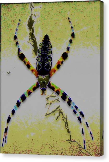 Itsy Bitsy Spider Canvas Print by Rebecca Flaig