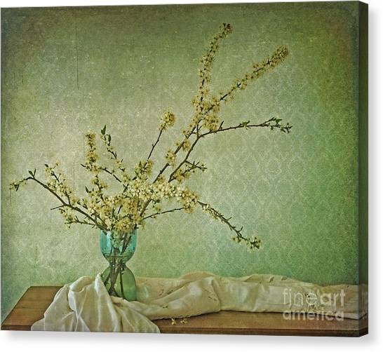 Plant Canvas Print - Ivory And Turquoise by Priska Wettstein