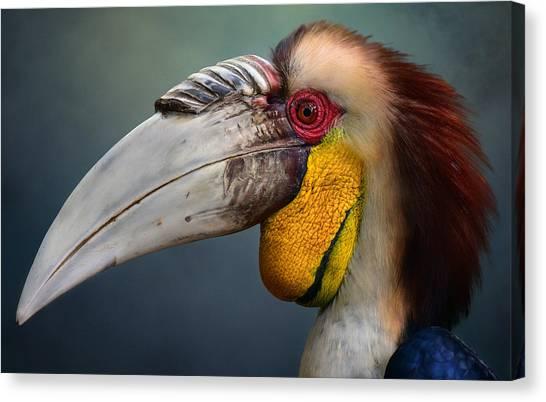 Colorful Bird Canvas Print - Jabrix by Fahmi Bhs