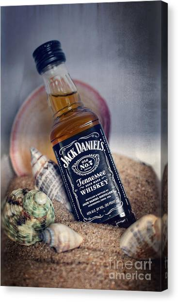 Jack At The Beach Canvas Print
