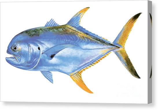 Spearfishing Canvas Print - Jack Crevalle by Carey Chen