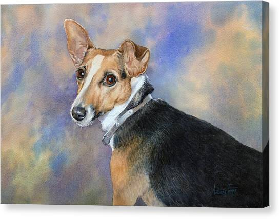 Jack Russell Canvas Print by Anthony Forster