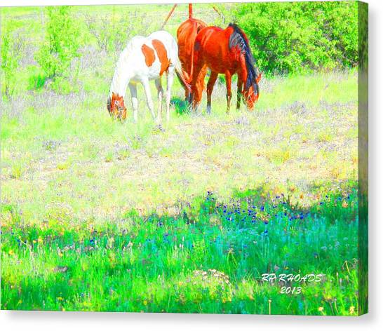 Jack Smokey And Camelot Texas Spring A Canvas Print
