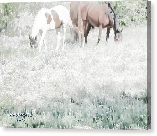 Jack Smokey And Camelot Texas Spring C Canvas Print