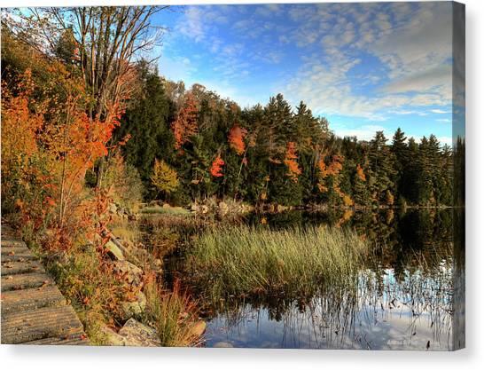 Jamies Pond 2 Canvas Print