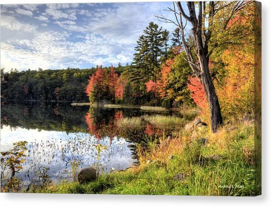 Jamie's Pond Canvas Print