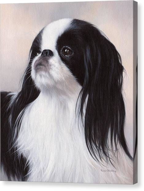 Chin Canvas Print - Japanese Chin Painting by Rachel Stribbling
