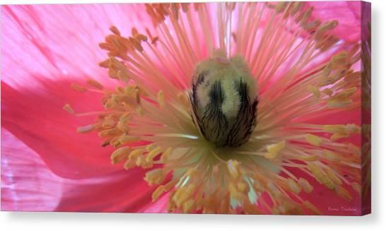 Pretty Pink Poppy Macro Canvas Print - Japanese Kimono by Renee Trenholm