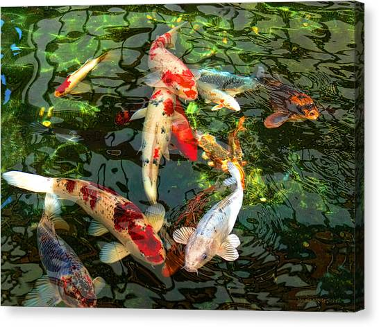 Japanese Gardens Canvas Print - Japanese Koi Fish Pond by Jennie Marie Schell