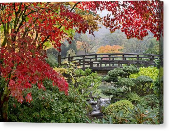Japanese Maple Trees By The Bridge In Fall Canvas Print