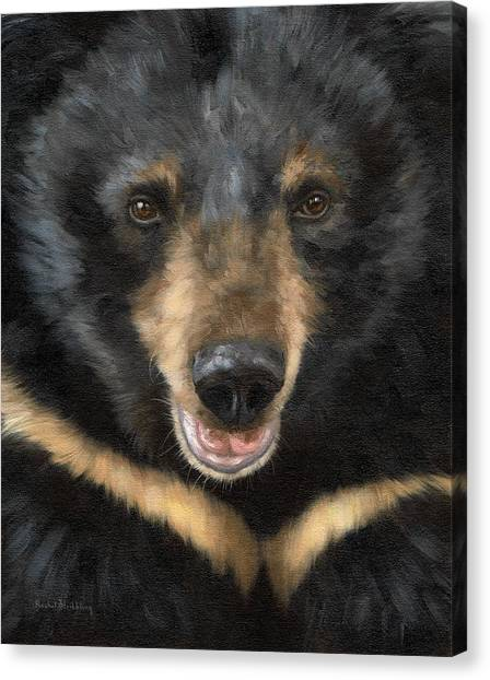 Black Bears Canvas Print - Jasper Moon Bear - In Support Of Animals Asia by Rachel Stribbling