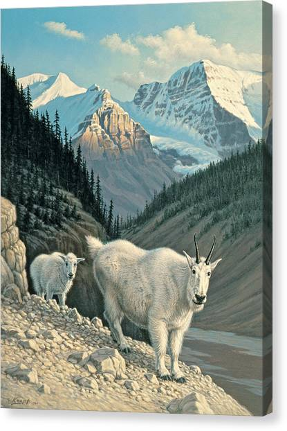 Goats Canvas Print - Jaspergoats by Paul Krapf
