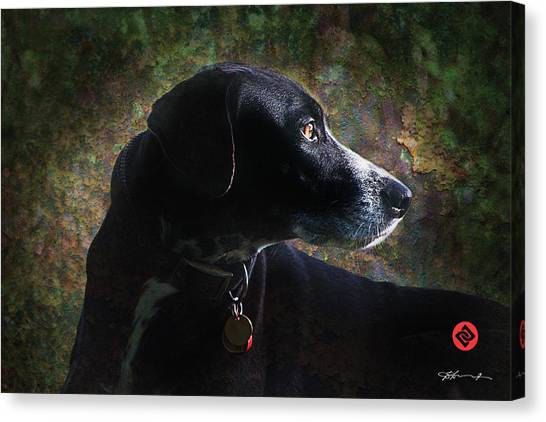 Jazz's Portrait Canvas Print