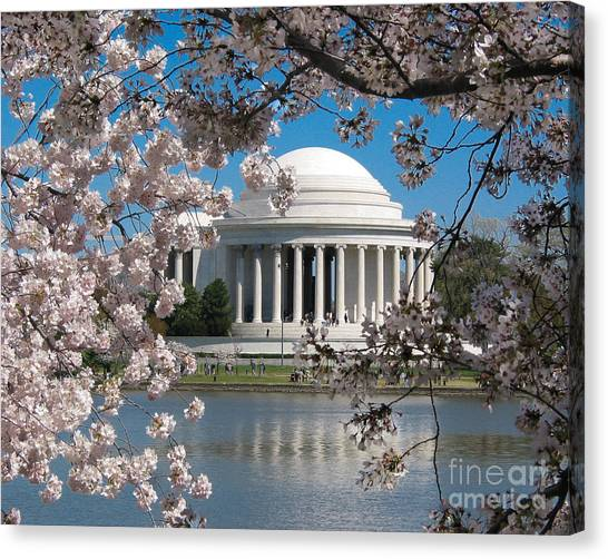 Jefferson Blossoms Canvas Print
