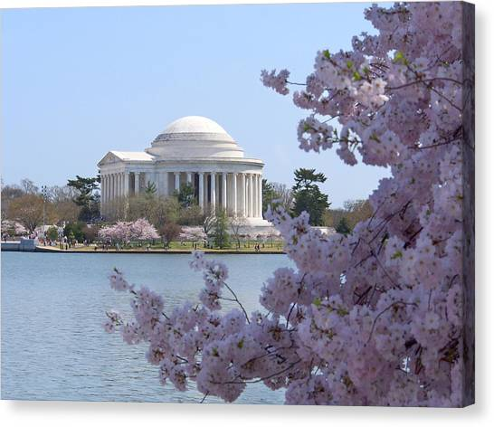 Jefferson Memorial Canvas Print - Jefferson Memorial - Cherry Blossoms by Mike McGlothlen
