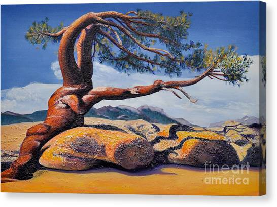 Jeffrey Tree Canvas Print
