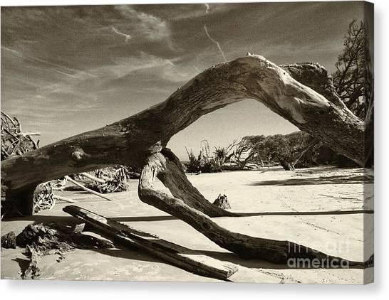 Jekyll Island Monster Canvas Print
