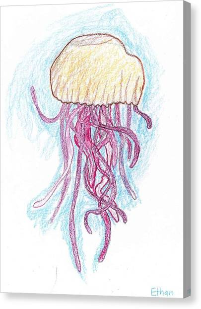 Jelly Fish Floating Canvas Print by Ethan Chaupiz
