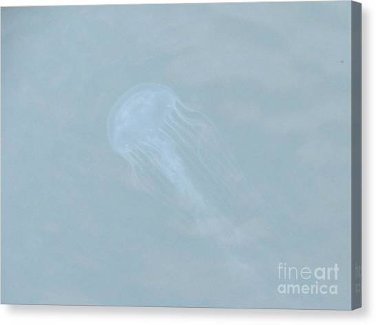 Jellyfish On The Bay Canvas Print by Debbie Nester