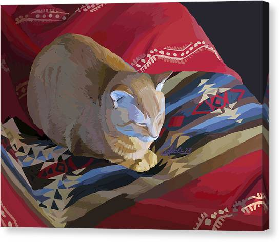 Jem And Blanket Canvas Print