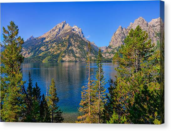 Teton Canvas Print - Jenny Lake Overlook by Greg Norrell