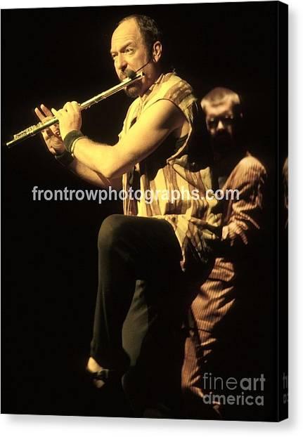 Folk Singer Canvas Print - Jethro Tulll by Concert Photos
