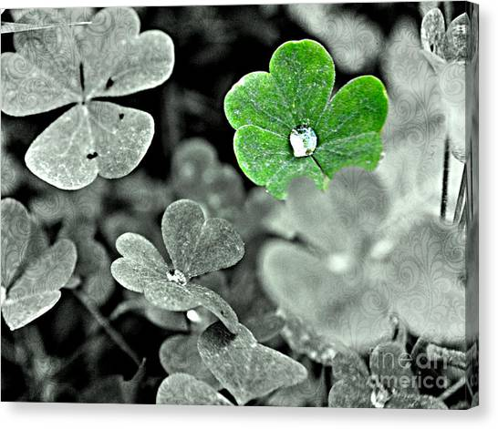 Jeweled Clover Canvas Print