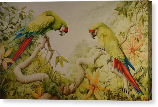 Jewels Of The Rain Forest  Military Macaws Canvas Print