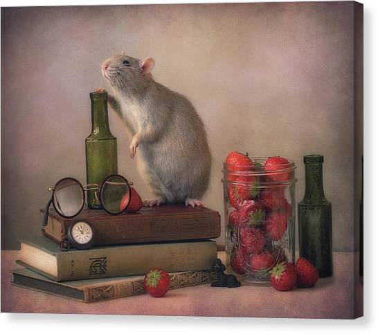 Mice Canvas Print - Jimmy  :) by Ellen Van Deelen