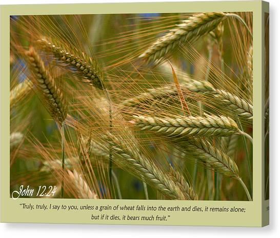 John 12 24 Canvas Print