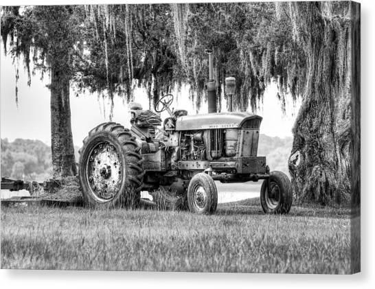 John Deer Tractor Under The Old Cedar Canvas Print