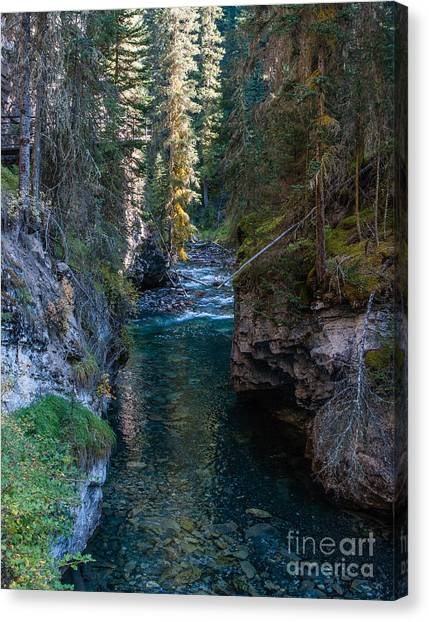 Johnson Falls Canada 2.0536  Canvas Print by Stephen Parker