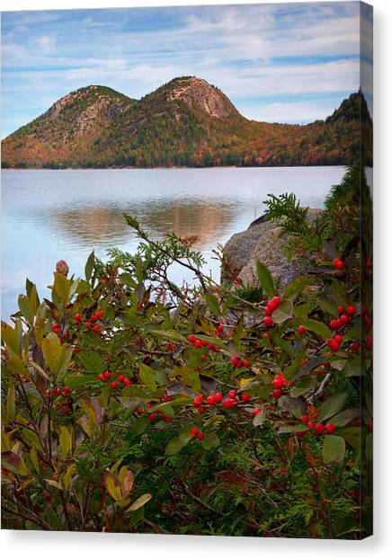 Jordan Pond With Berries Canvas Print