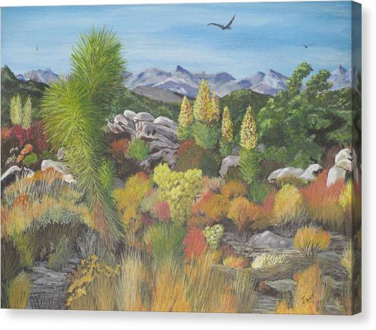 Joshua Tree Park Canvas Print